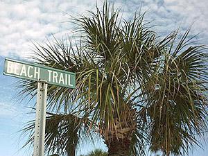 [Beach Trail]