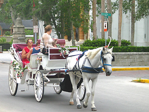[carriage ride in St Augustine]