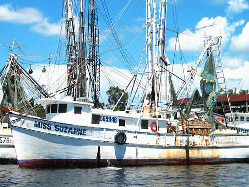 [the sponge docks in Tarpon Springs]